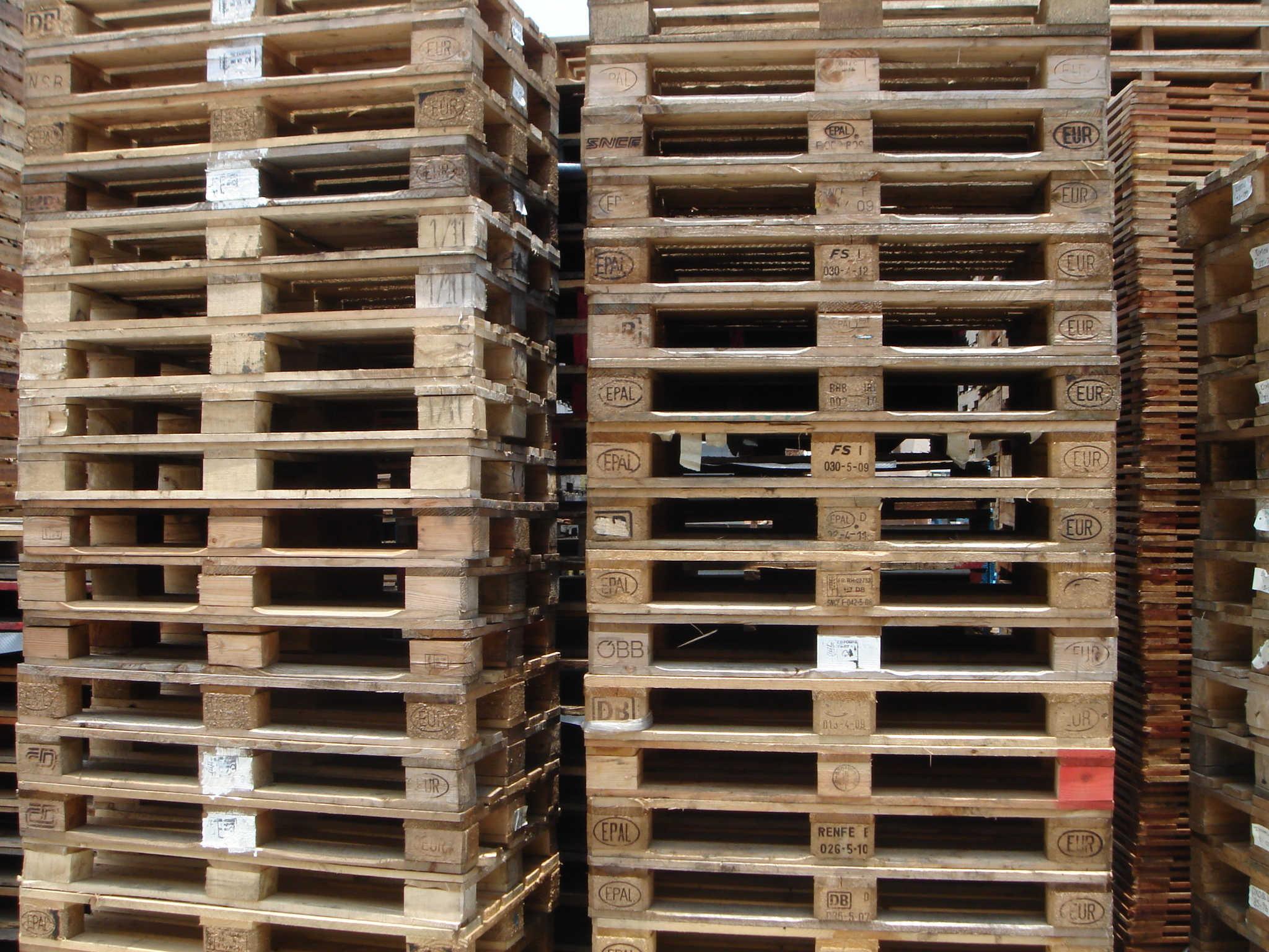 Teng Lee Green Pack Categories Recycle Pallet